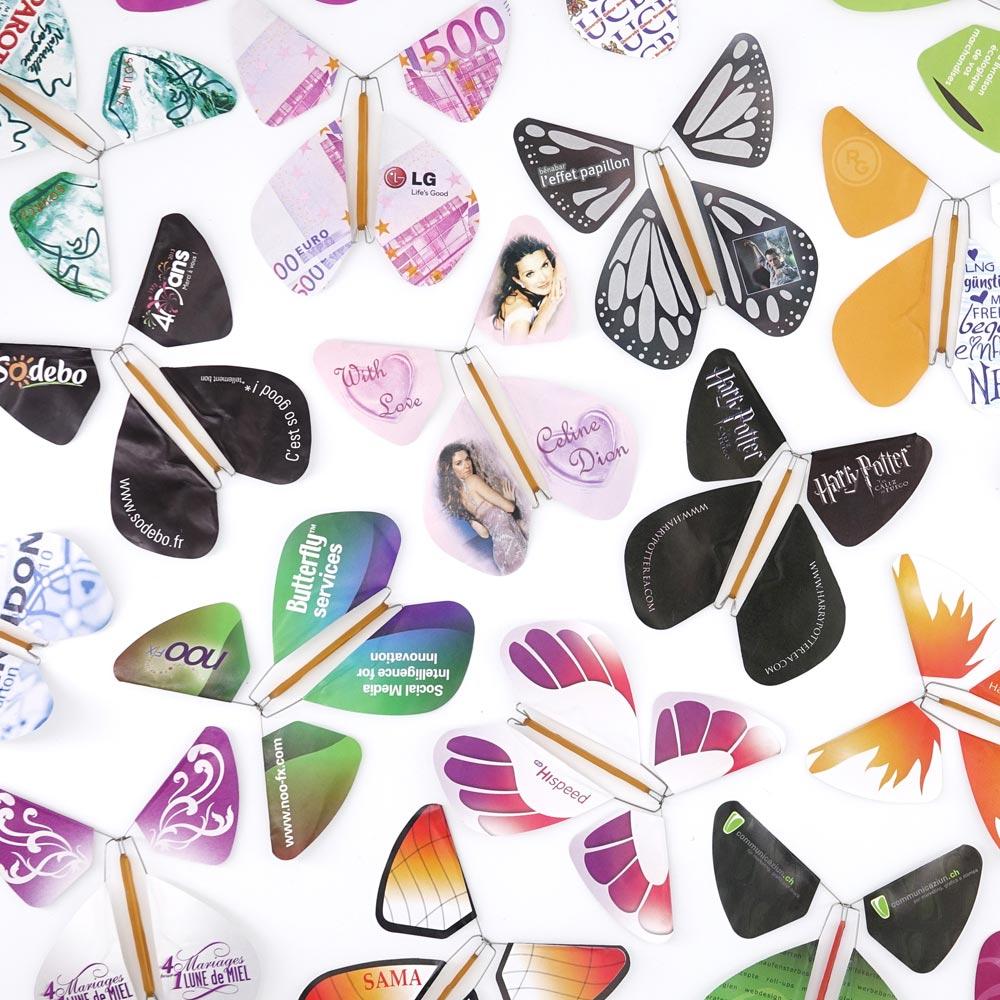 Le Papillon Magique possède des références prestigieuses