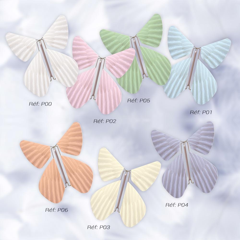 Le Papillon Magique collection PLUMES
