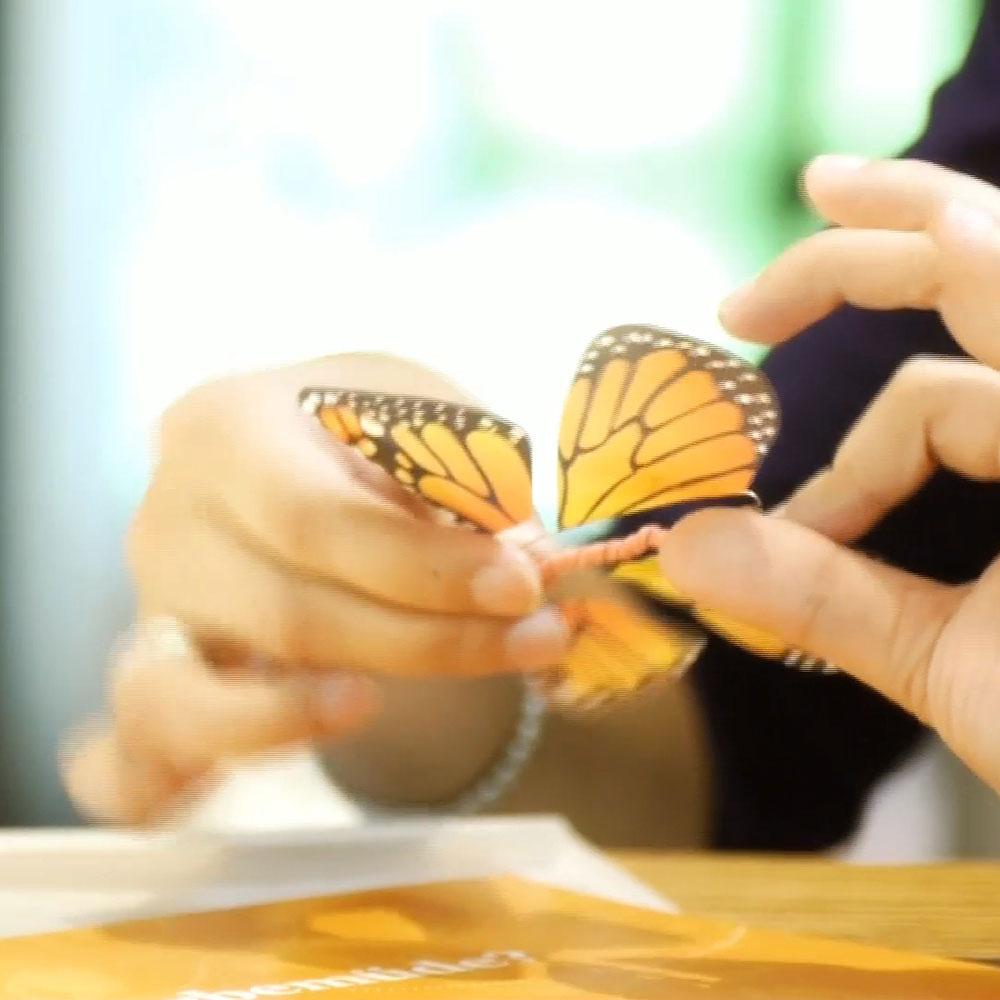 Nos papillons sont assemblés grâce au travail de personnes issues de la réinsertion sociale.