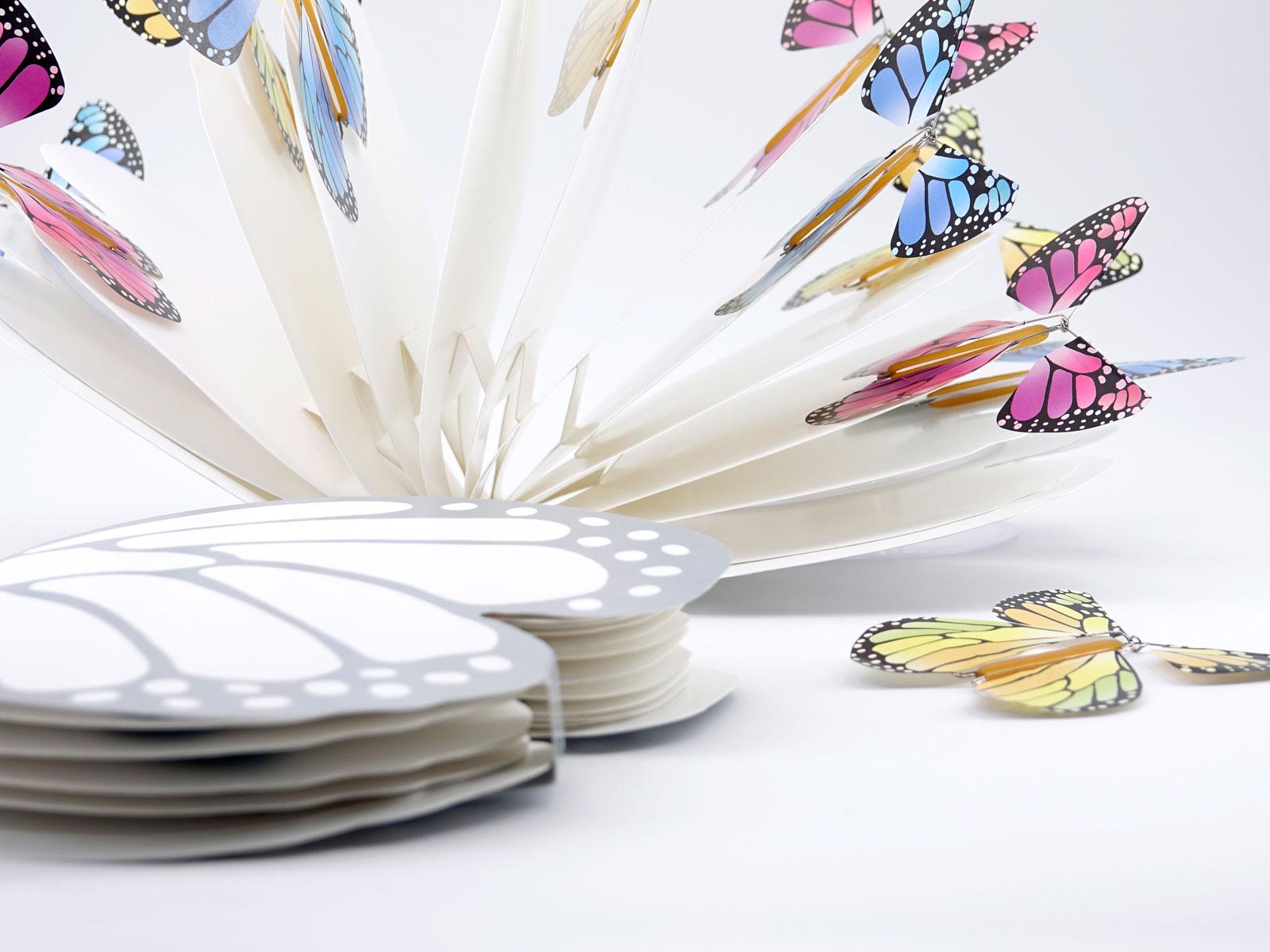 Le Papillon Magique avec son Livret Papillon très coloré