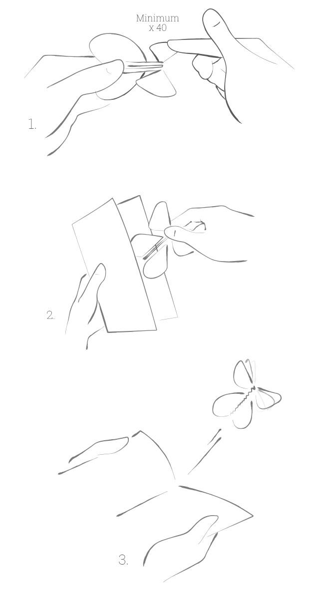 Mode d'emploi du Papillon Magique