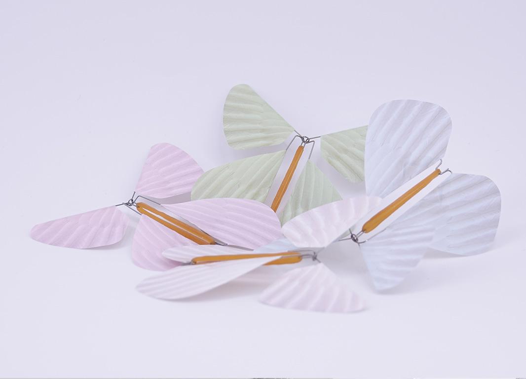 Le Papillon Magique gamme Plumes