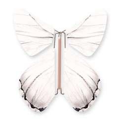 Butterfly Impulse White