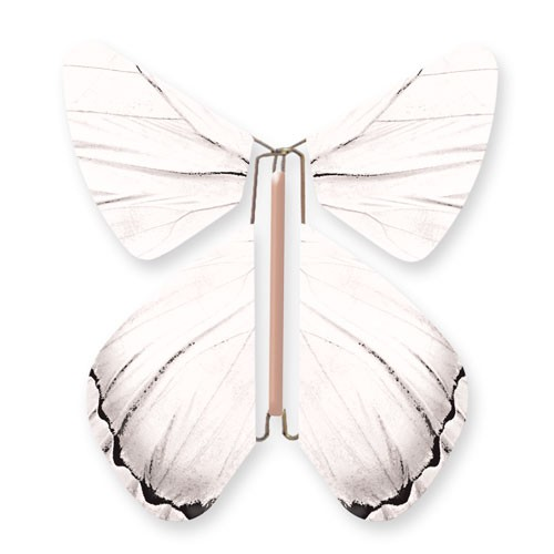 Mariposa Blanca Impulsion
