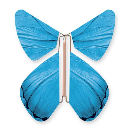 Papillon Impulsion Bleu