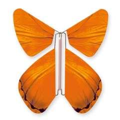 Butterfly Impulse Orange