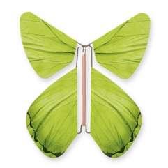 Papillon Impulsion Vert