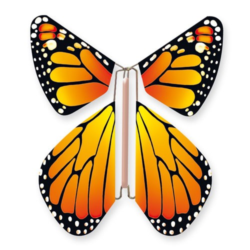 Butterfly New Concept Orange