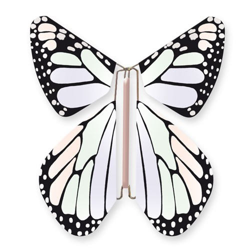 Butterfly New Concept Pastel