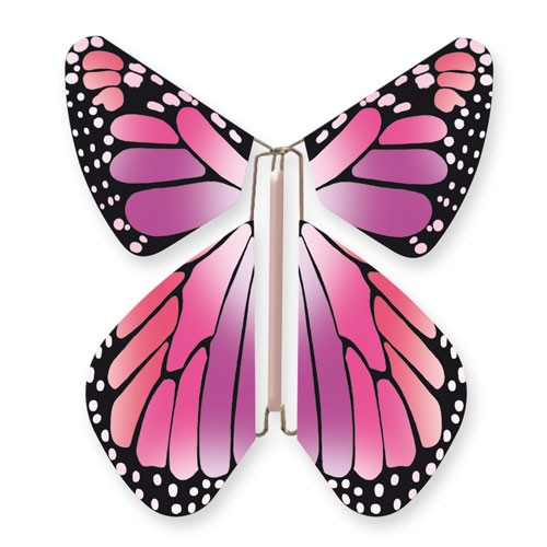 Butterfly New Concept Pink