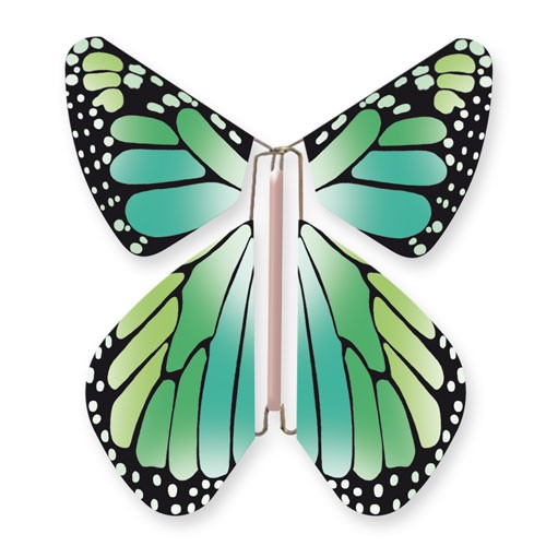 Butterfly New Concept Green