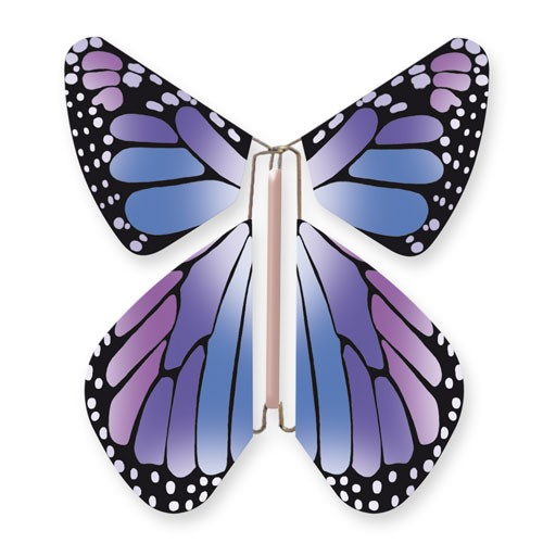 Butterfly New Concept Purple