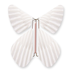 Papillon Plume Blanc Perle