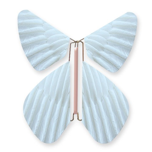 Butterfly Feathers Pastel Blue