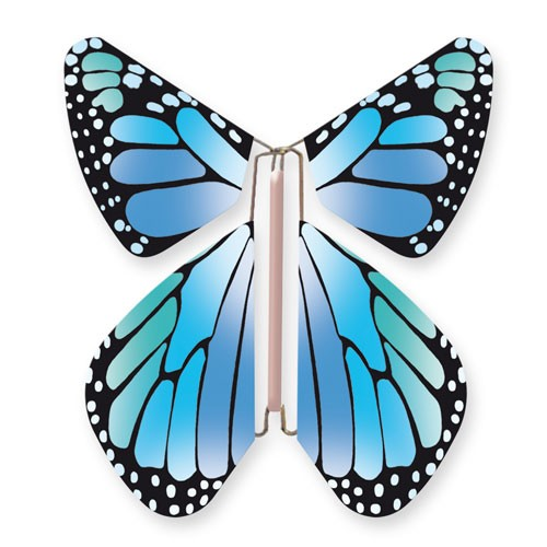 Butterfly New Concept Blue