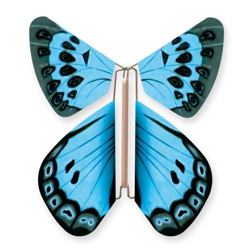Wild Nature Butterfly Large Blue